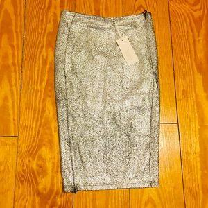 Dresses & Skirts - Silver Skirt